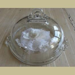 Brocante glazen stolp met onderbord
