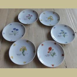 Fonkelnieuw 6 ontbijtbordjes met wilde bloemen, Libelle Exclusief - La Brocanti WM-55